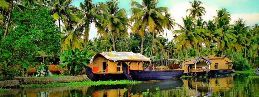 Munnar With Backwaters & Cochin - 4N/5D