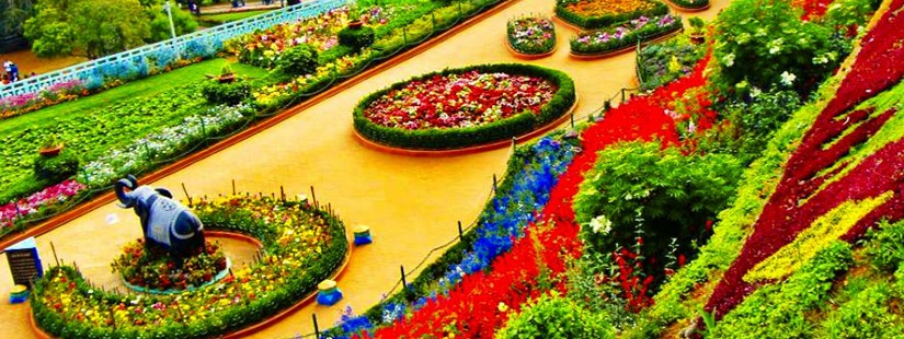 Ooty With Coorg - Ex Bangalore - 4N/5D
