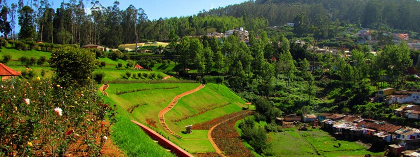 Ooty With Mysore - Ex Bangalore - 4N/5D