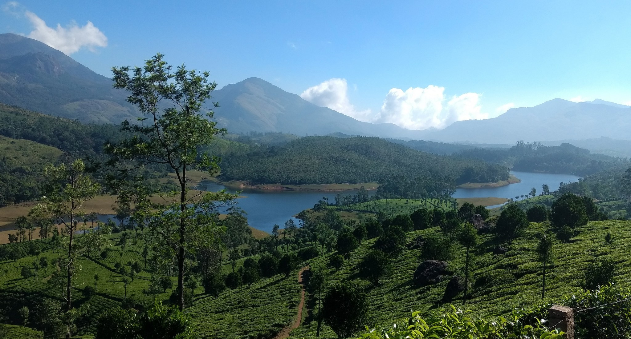 Munnar With Backwaters & Wildlife - 4N/5D