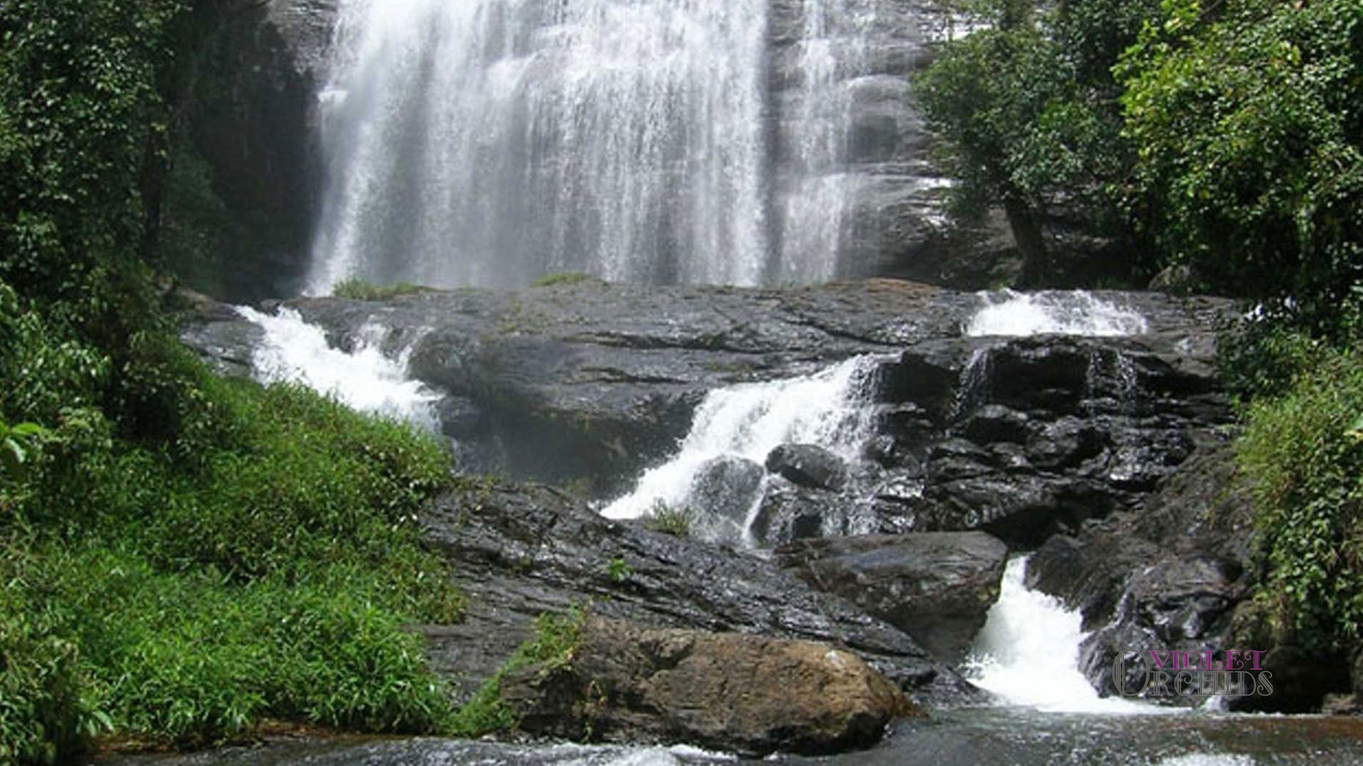Coorg With Mysore - Ex Bangalore - 3N/4D