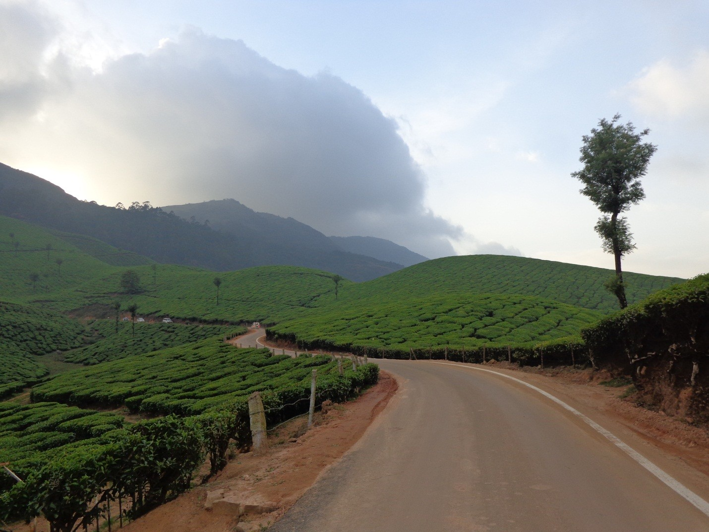 Munnar With Backwaters - 3N/4D